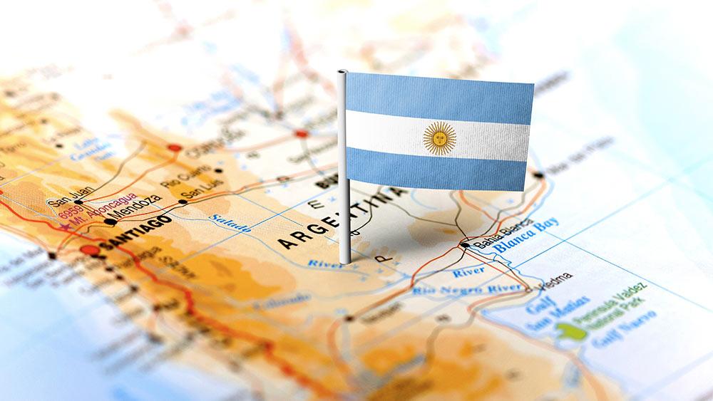 Аргентинский мёд на мировом медовом рынке