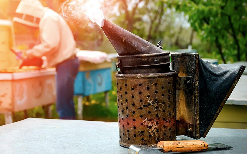 Дымарь для пчел — как использовать