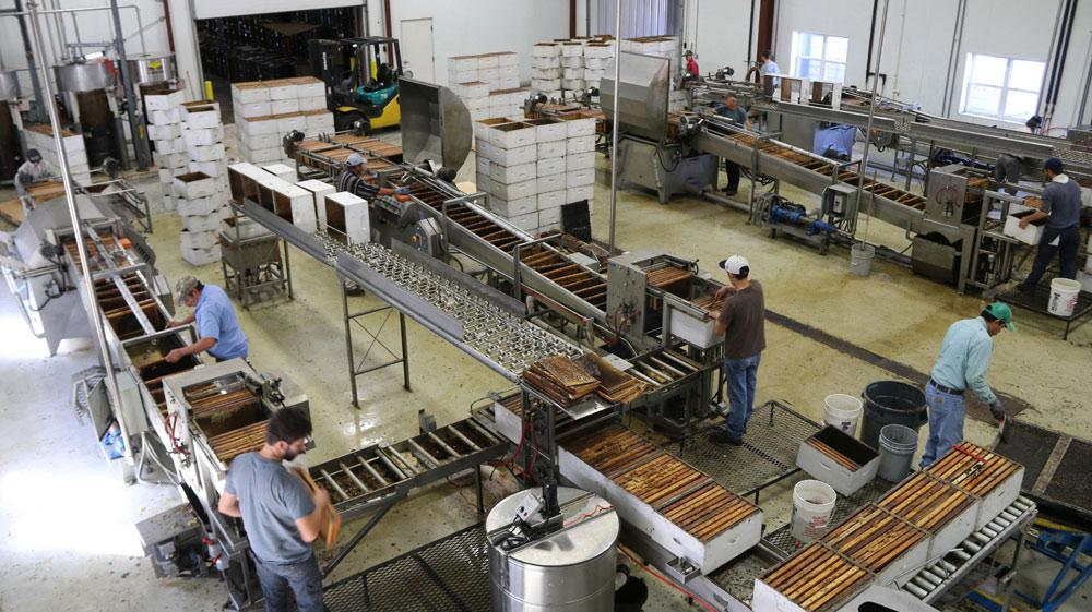 Пример организации получения меда на промышленной пасеке