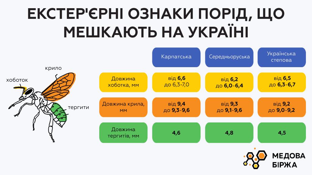 Экстерьерные признаки пород, обитающих в Украине