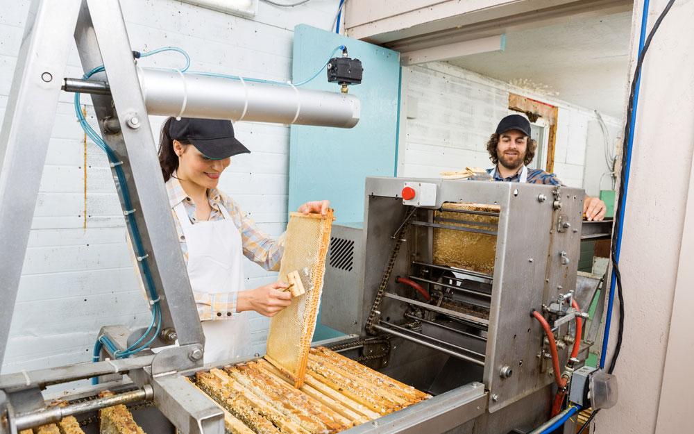 Ветеринарно-санитарные требования к объектам по производству меда