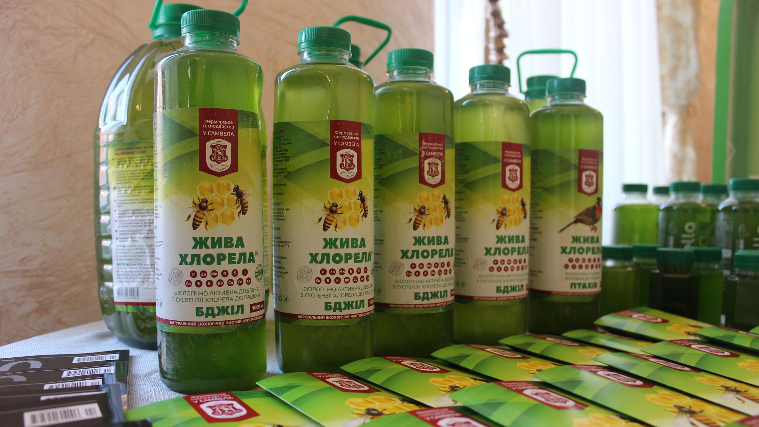 Микроводоросль хлорелла — естественный антибиотик для пчёл